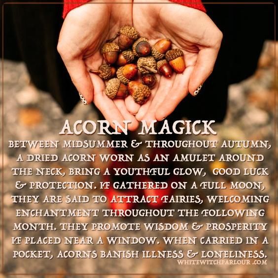 acorn-magick